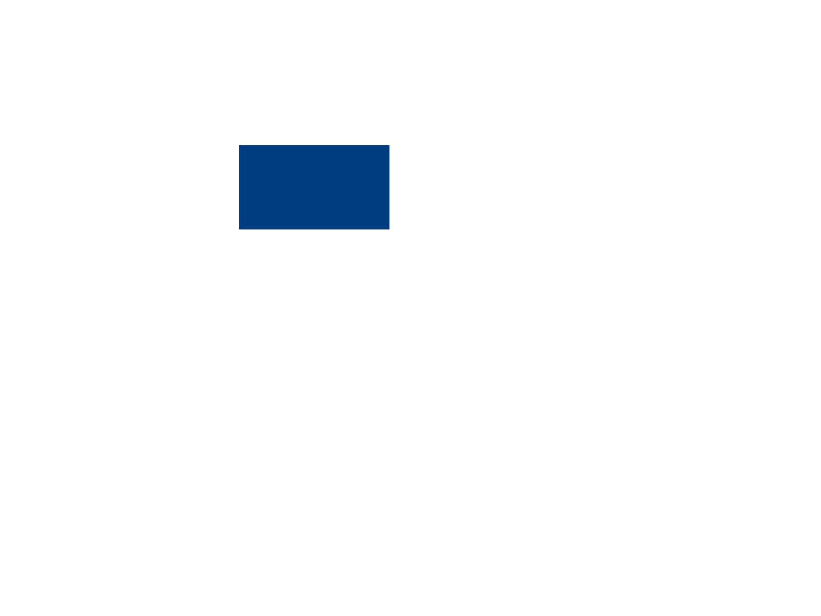 Задняя полусфера авто тонировка
