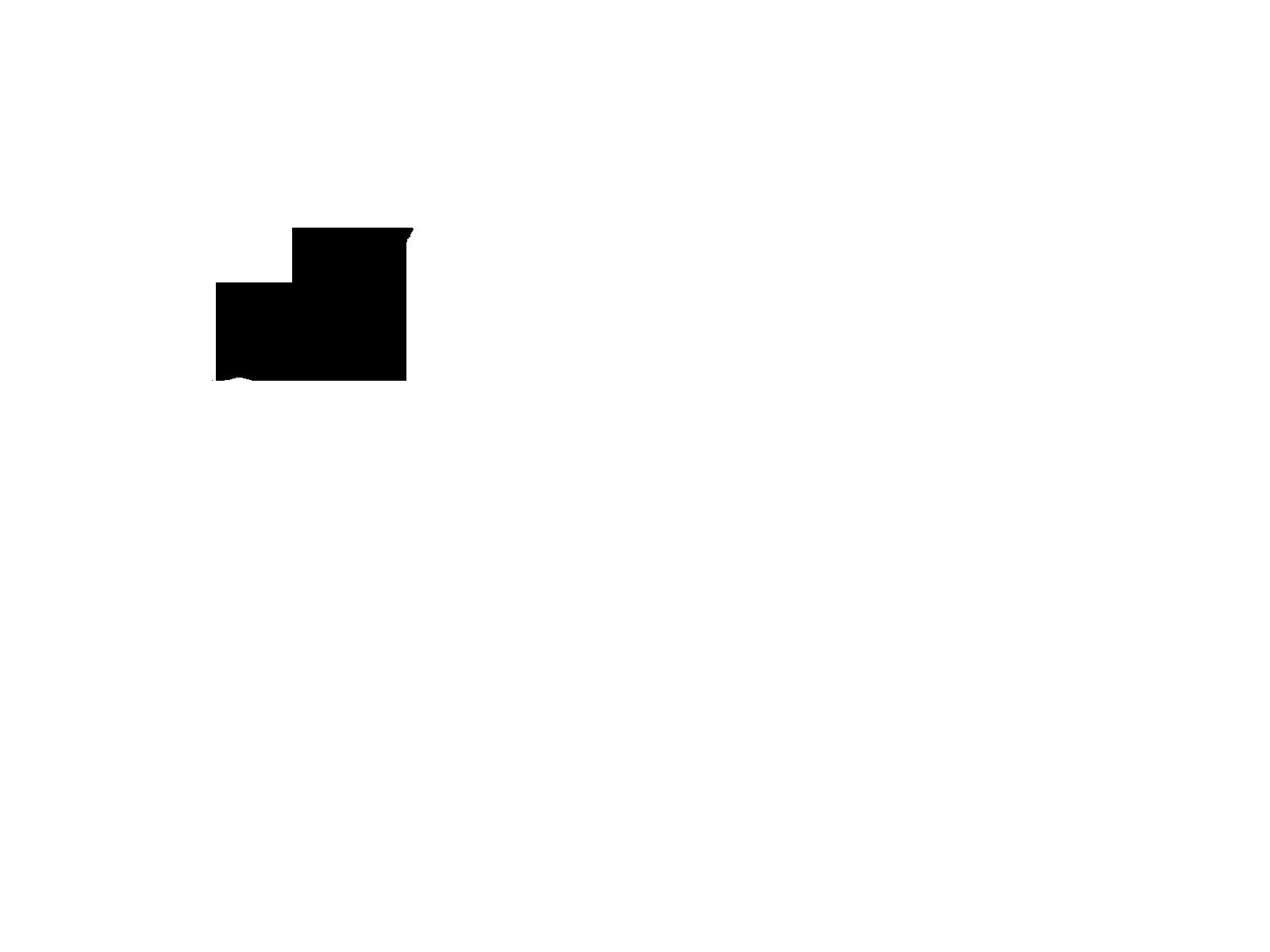Тонировка задних стекол